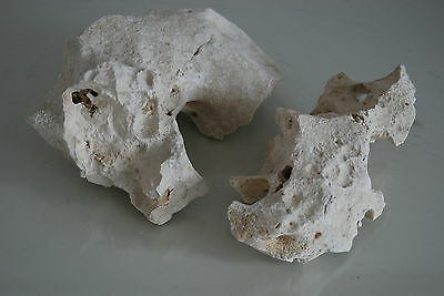 Aquarium Natural Coral Cichlid Rock 2 Pieces Suitable For All Aquarium Use BA11