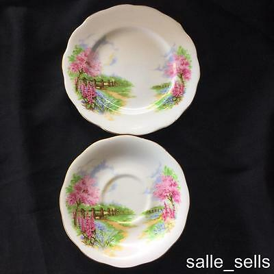 Queen Anne Saucer & Plate  Meadowside. Replacement China