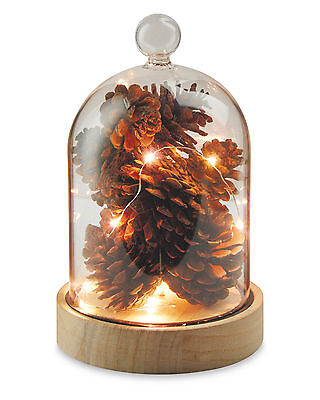 Christmas Cone Light Up Globe New & Boxed