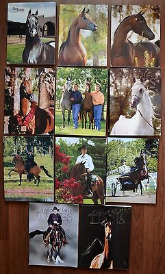 The Arabian Horse Times Magazines Lot of 11 2003 Stallions Horse show champions
