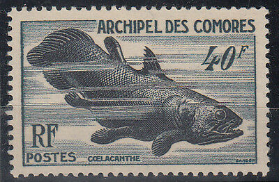 Comores 1954 Coelacanthe Yt: 13 Mlh