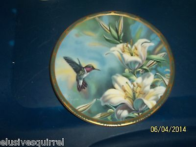 1989 Pickard Cyndi Nelson Ruby Throated Hummingbird And Lilies Collector's Plate