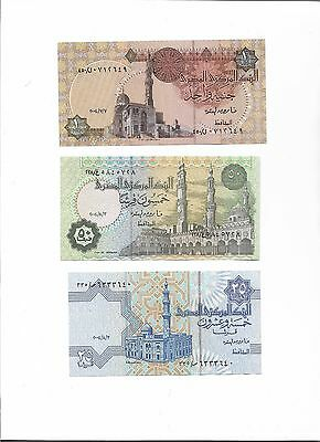 Egypt 5 Pcs Lot Banknotes Currency - all UNC
