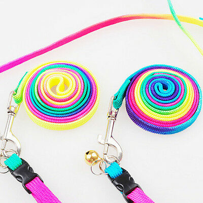 Small Dog Puppy Doggy MultiColor Rainbow Harness Lead Luminous Lead Leash New