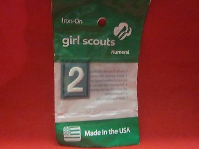 Junior Or Cadette Girl Scouts Number 2 (New)