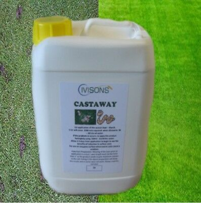 5 ltr WORM CAST SUPPRESSANT KEEP LAWN CAST CLEAR DOES NOT KILL WORMS CASTAWAY