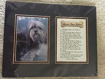 """Lhasa Apso """"Rules"""" Dog Framed Art Print Picture"""
