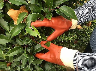 Gardening Gloves Small Size 6-6 1/2 5 - PVC  1 pair