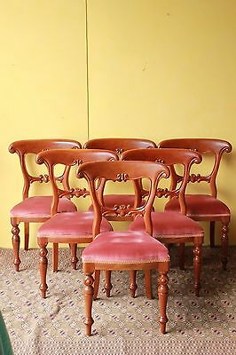 Antique style Dining Chairs, set of Six. Solid Mahogany.