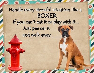 BOXER Handle Stressful Situations Magnet