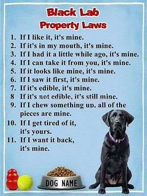 BLACK LAB Property Laws Magnet Personalized with Dog's Name