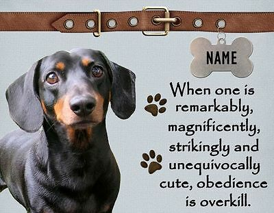 DACHSHUND Obedience is Overkill Refrigerator Magnet  Personalized