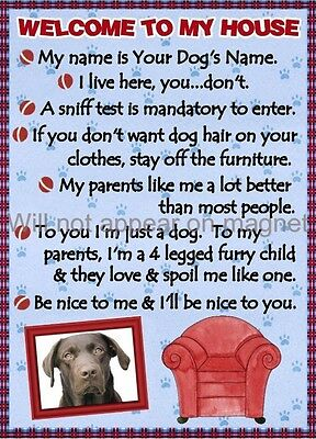 CHOCOLATE LAB Dog Magnet Welcome to My House