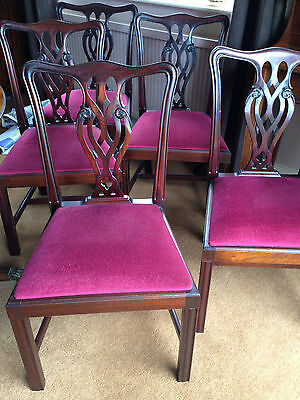 8 Mahogany Dining Chairs