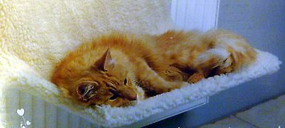 Cat Radiator Bed Warm And Cosy With Removable Cover L 50cm, W 32cm, H 28cm