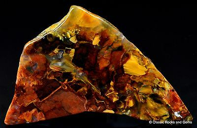 African Pietersite Outjo Namibia Good Quality Polished Slab 60x35x6mm 20gr