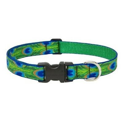 LupinePet 1-Inch Tail Feathers 12-20-Inch Adjustable Dog Collar