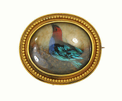Antique Victorian 14kt Yellow Gold Oval Frame Hand Painted Bird Picture Brooch