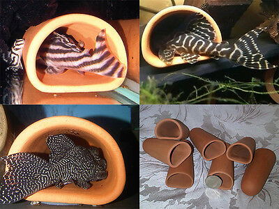 "7 FOR THE PRICE OF 6 Terracotta ""HYPAN D-caves"" Pleco Cave L46 L260 Small XS XXS"