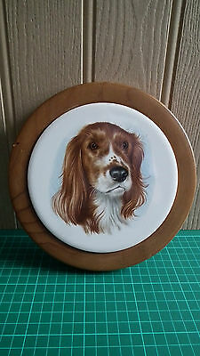 Welsh Springer Spaniel Picture on Circular Wooden Frame - Good Condition
