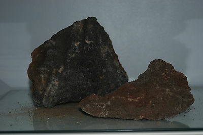 Natural Aquarium Lava Rock 2 Medium Sized Pieces Suitable for All Aquariums  41C