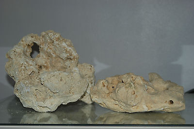 Aquarium Natural Coral Cichlid Rock 2 Medium Size Pieces For Aquarium Use B5C