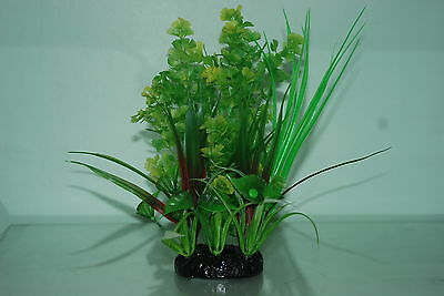 Aquarium Bushy Ring Plants approx 22 cms high Green with a ting of Red Colour