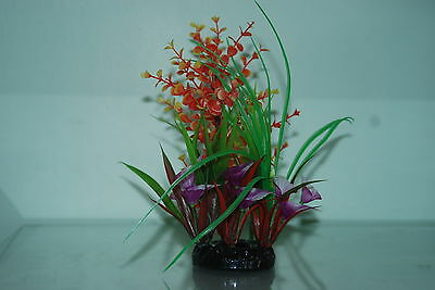 Aquarium Bushy Ring Plants approx 22 cms high Orange Green Purple Red Colour