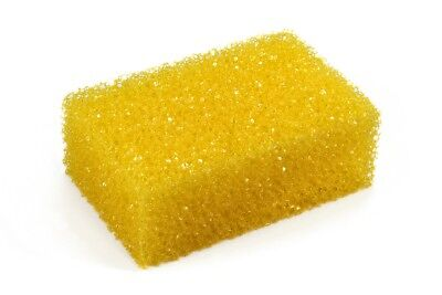 Insect sponge for Insect wiper