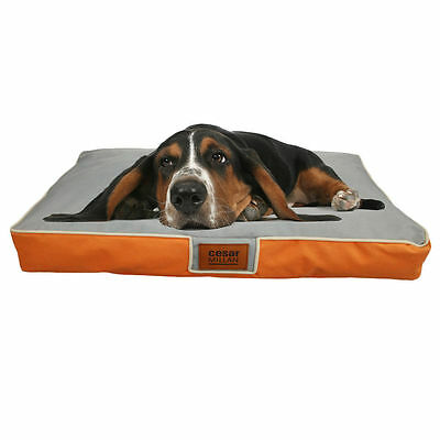 New Orthopedic Extra Large  Pet Dog Bed Waterproof Removable Cover TB