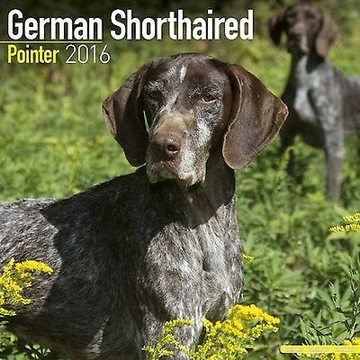 German Shorthaired Pointer Calendar - Only Dog Breed German Shorthaired P... New