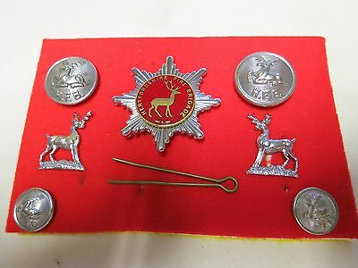 Hertfordshire Fire Brigade Cap Badge - 4 Tunic Buttons - 2 Stags - Obsolete