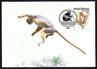 Western Red Colobus Primate Monkey WWF Postcard Guine Bissau Africa stamp PC