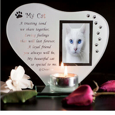 Cat Inspirational poem, candle & photo holder glass memorial plaque  #1