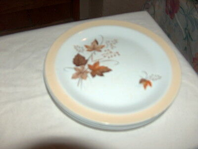 4 Alfred Meakin Glo white Autumn Glory side plates