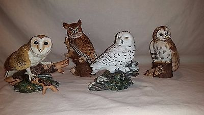 The Hamilton Collection Majestic Owls of the Night Maruri 1986