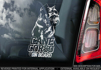 Cane Corso - Car Window Sticker - Dog Sign -V05