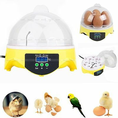 Auto Poultry Egg Incubator 7 Eggs Capacity Hatcher Turning Temperature Control
