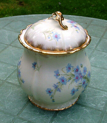 Vintage Porcelain Cracker Jar with H.P. Blue Cornflowers/Bachelor Buttons