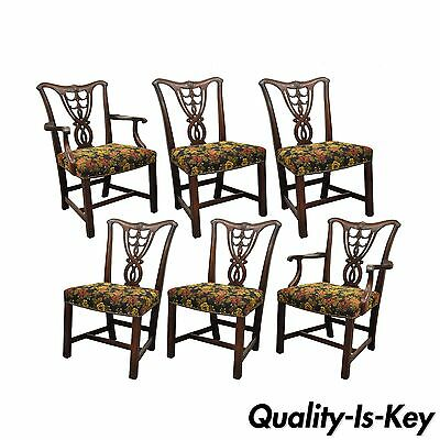Set of 6 Vintage Chippendale Mahogany Ribbon Back Bell Flower Dining Room Chairs