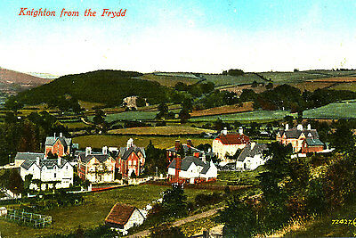 RADNORSHIRE -  postcard of Knighton from the Frydd