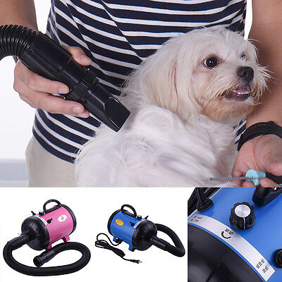 Puppy Pet Grooming Blower Blaster Force Hair Dryer and Vacuum Dog Wash 110-220V