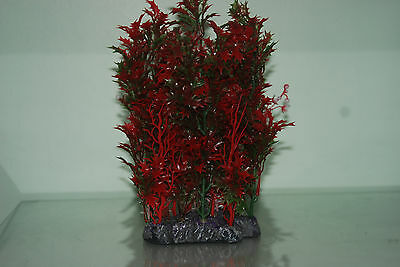 Aquarium Plant Proserpinaca Palustris Red Bush Plant & Weighted Base 10x6x23 cms