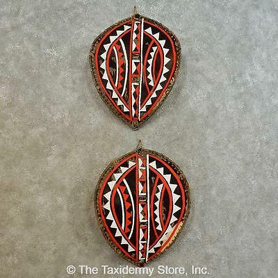 VINTAGE AUTHENTIC MAASAI shield spear set African - $120 00
