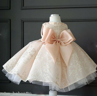 Eva Flower Girl Formal Lace Princess Dress Puffy Frock Birthday Gift Bridesmaid