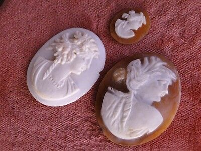 Antique Vtg ART NOUVEAU Shell Angel Skin CORAL Hand CARVED Deep Relief CAMEO LOT
