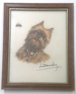 Griffon Bruxellois/ Brussels Griffon Danchin Print With 'bee' In A Frame
