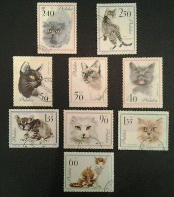 A Small Collection of Stamps Featuring Cats
