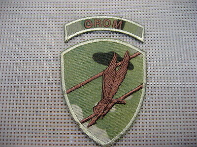 Poland Polish Army Patch Special Forces GROM,subdued