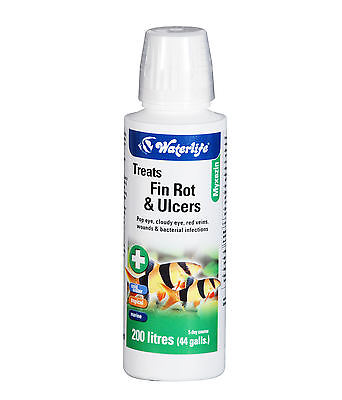 Waterlife Myxazin for Fin Rot, Ulcers, in Fresh and Salt Water 100 ml Bottle